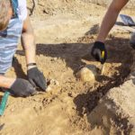 Photographie de fouilles archéologiques mettant à jour des ossements humains.