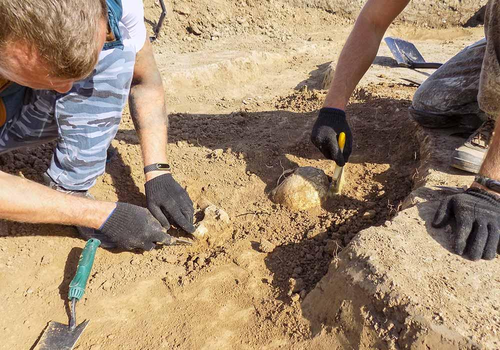 La plus ancienne phalange humaine découverte