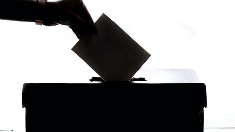 Un gène du vote?