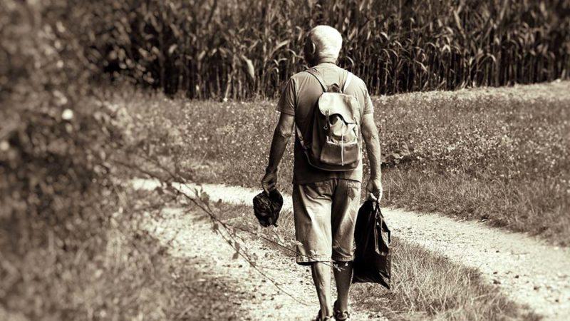 Les fonctions cognitives déclinent avec le taux de vitamine D chez les séniors