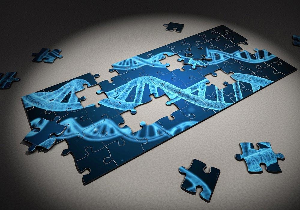 L'épigénétique, quand l'environnement a son mot à dire sur la génétique.