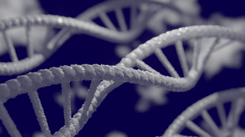 Quand l'ADN arrive dans vos circuits imprimés