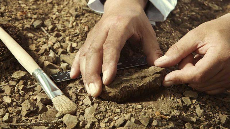 Restauration et conservation des objets archéologiques: comment ça se passe?