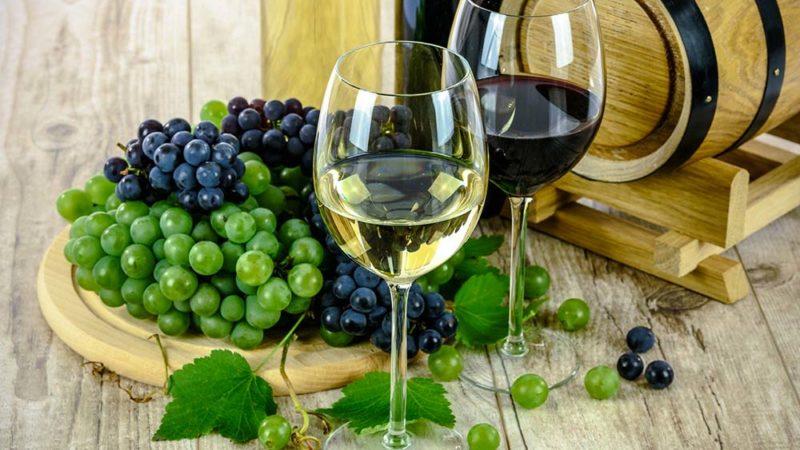 Du raisin au vin: comment ça se passe ?