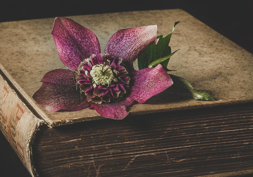 Une encyclopédie compilera bientôt les odeurs du passé