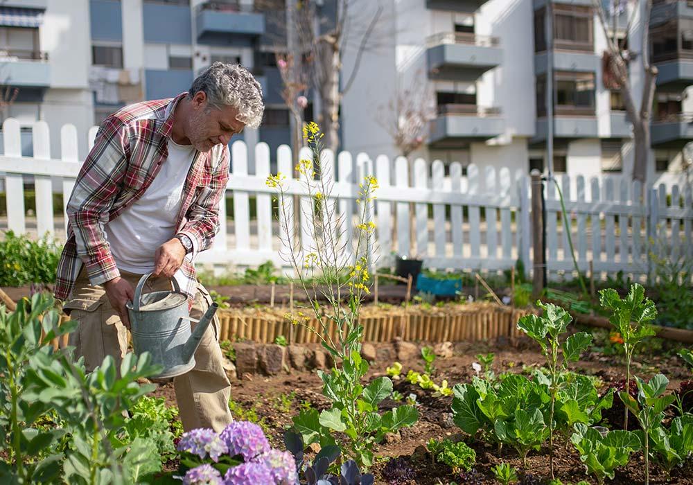 Les jardins partagés mènent-ils à un mode de vie plus durable ?